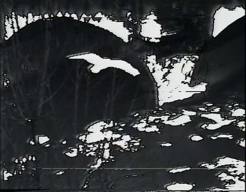 saccage maison saint colombe video